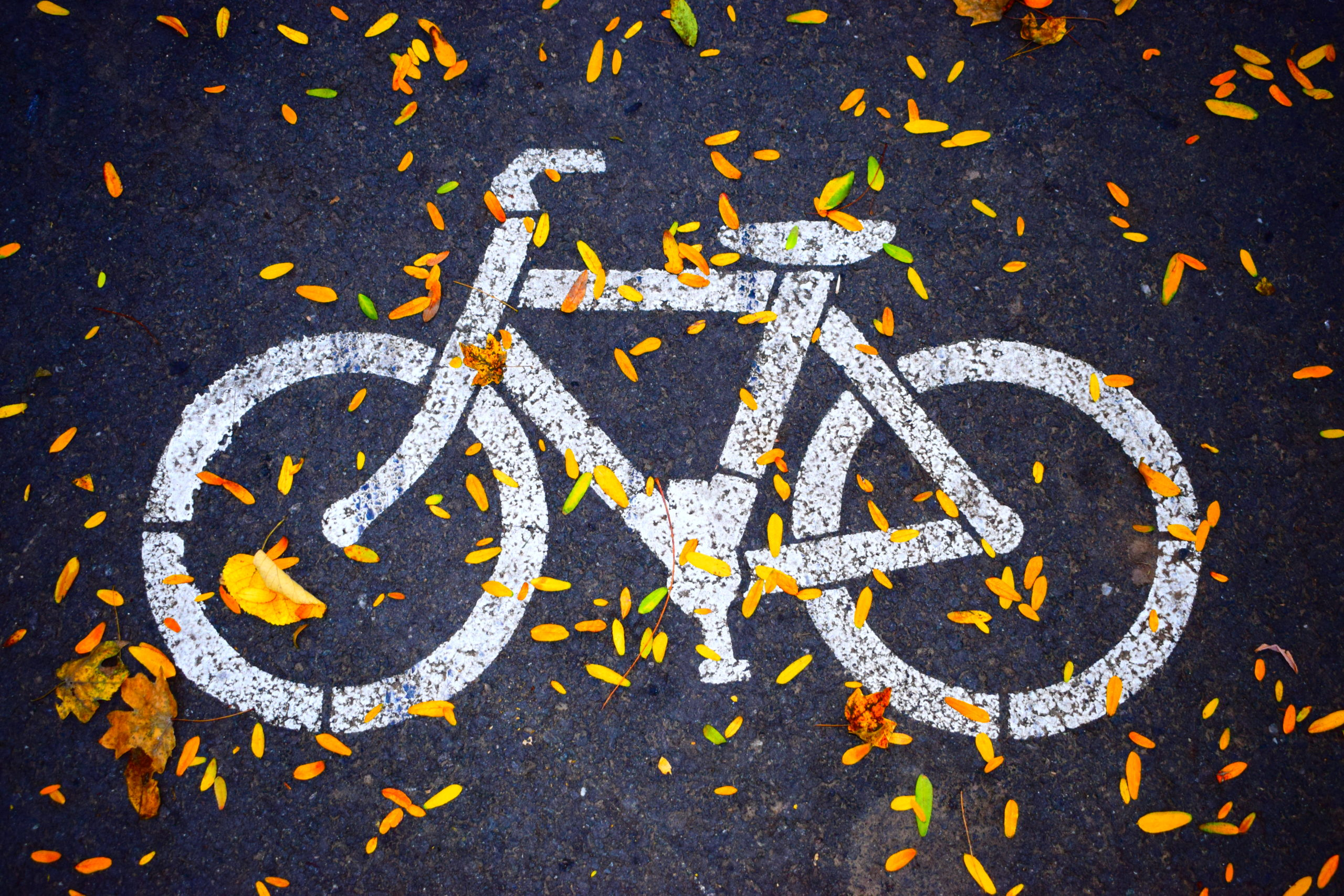 White bicycle road sign